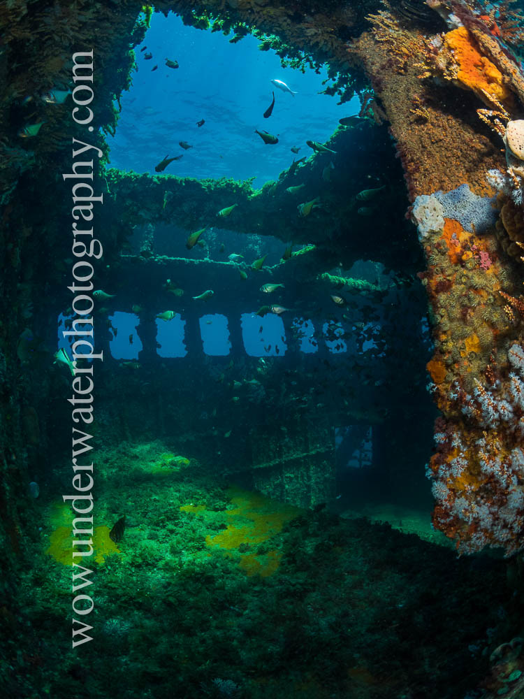 Inside the LENA Wreck Bunbury#00002 web